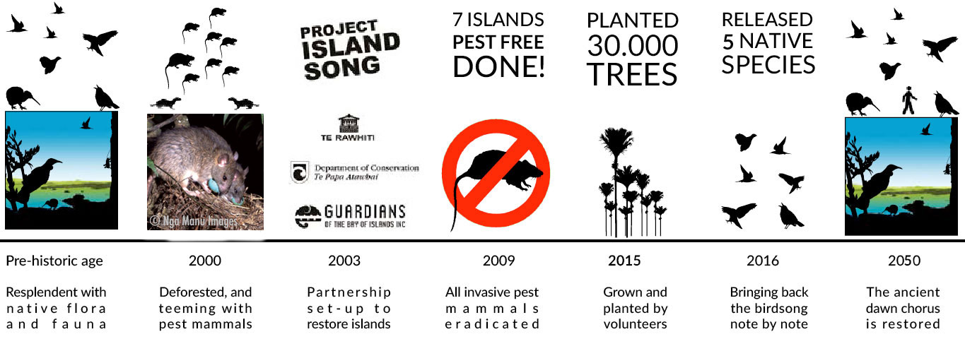 This image shows our time line. From the Prehistoric age where these islands would have been resplendant with native flora and fauna, through to the year 2000 where they were deforested and teemed with pest mammals. Project Island song was established in 2003 as a partnership to restore the islands. By 2009 all invasive pests and mammal were eradicated. By 2015 30,000 native trees had been grown and planted. By 2015 there were five native species released. Our hope is that by 2050 the ancient dawn chorus is restored.